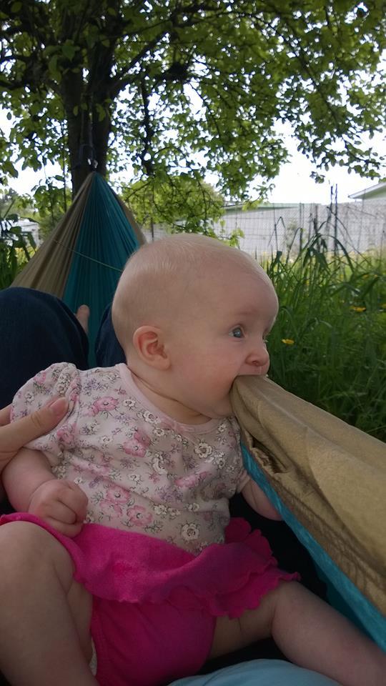 Grand Trunk Single Hammock The Outdoor Adventure
